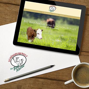 Hintergrund Shutterstock/goir